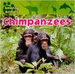 Amazing Animals: Chimpanzees